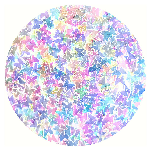 rainbow butterfly glitter holographic